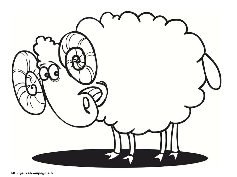 Coloriage mouton - Mouton en dessin ...