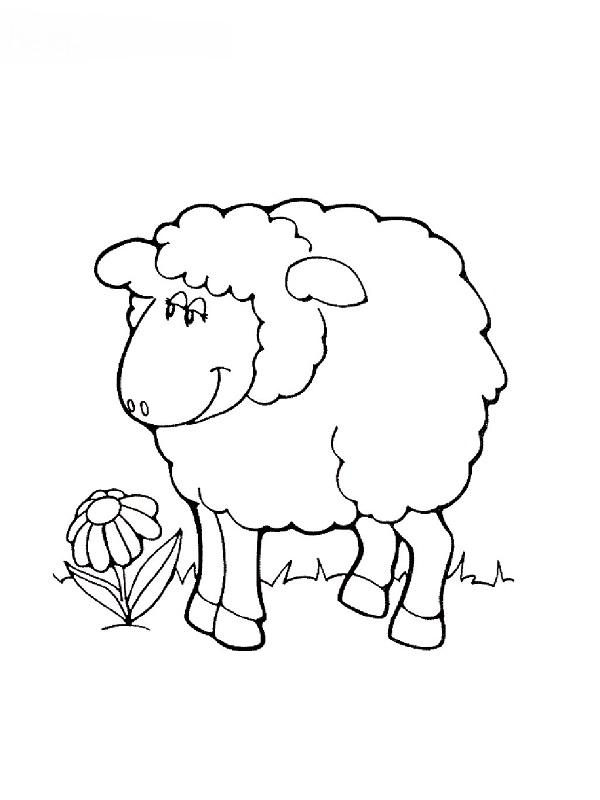 Coloriages animaux de la ferme - Dessin mouton ...