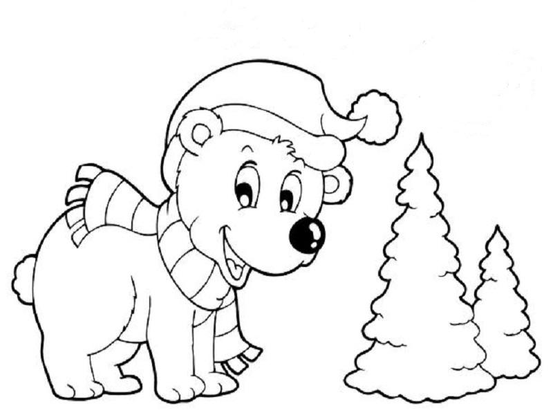 dessin ourson polaire