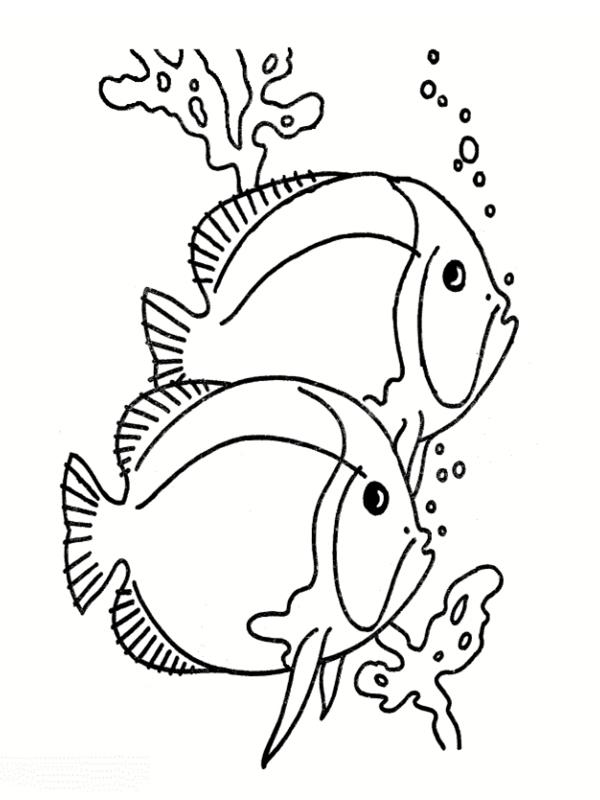 dessin poisson imprimer