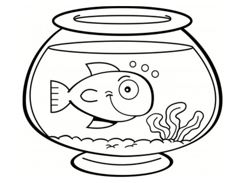 Poissons coloriages for Poisson bocal