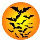 couleurs halloween