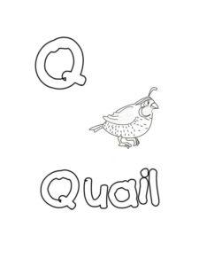 modèles alphabet anglais