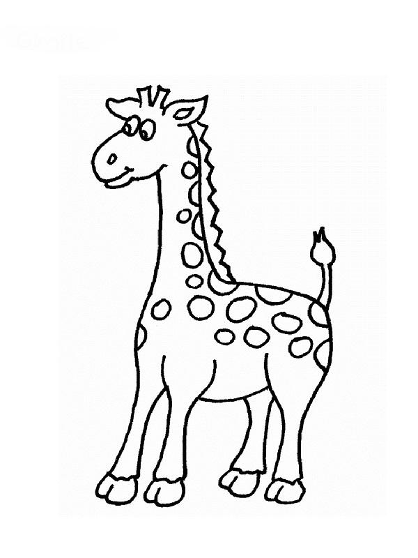 Souvent Coloriages animaux AL57