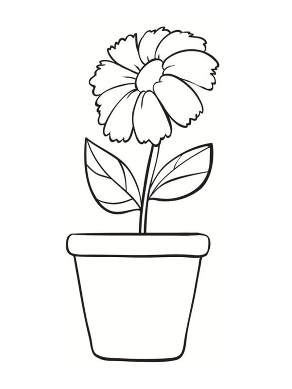 Coloriage fleur simple coloriage une libellule et un papillon volent autour d une fleur dessin - Fleur en dessin ...