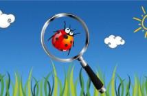 Science et chasse aux trésors de la nature
