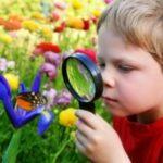 chasse au trésor de jardin