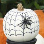 citrouille toile d'araignée