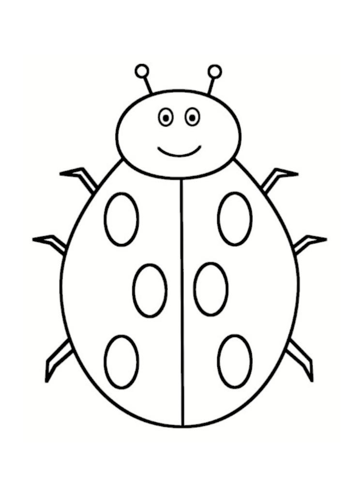 Coloriage coccinelle 20 mod les imprimer - Modele de dessin d animaux ...