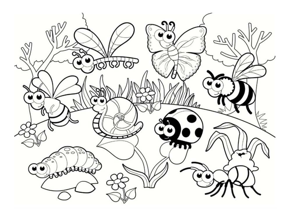 Coloriage coccinelle 20 mod les imprimer for Bugs coloring page