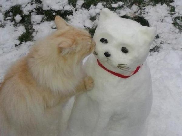photo bonhomme neige