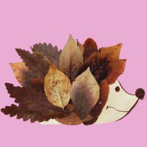 hérisson feuilles
