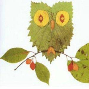 papier cllage feuilles