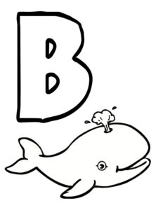 b comme baleine
