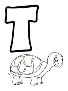 t comme tortue