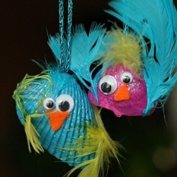 coquillages oiseaux