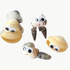 personnages coquillages