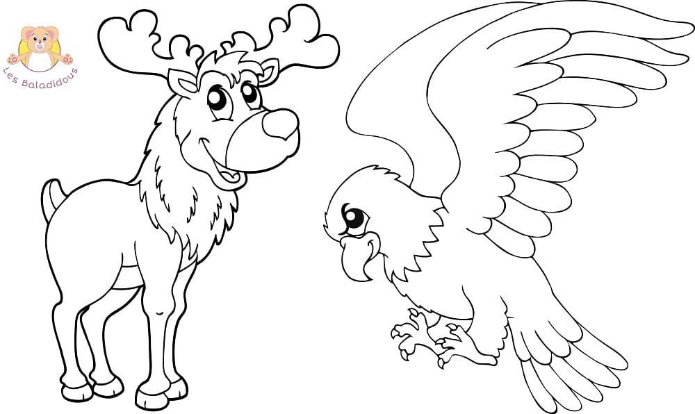 Coloriages et comptines - Coloriage aigle ...