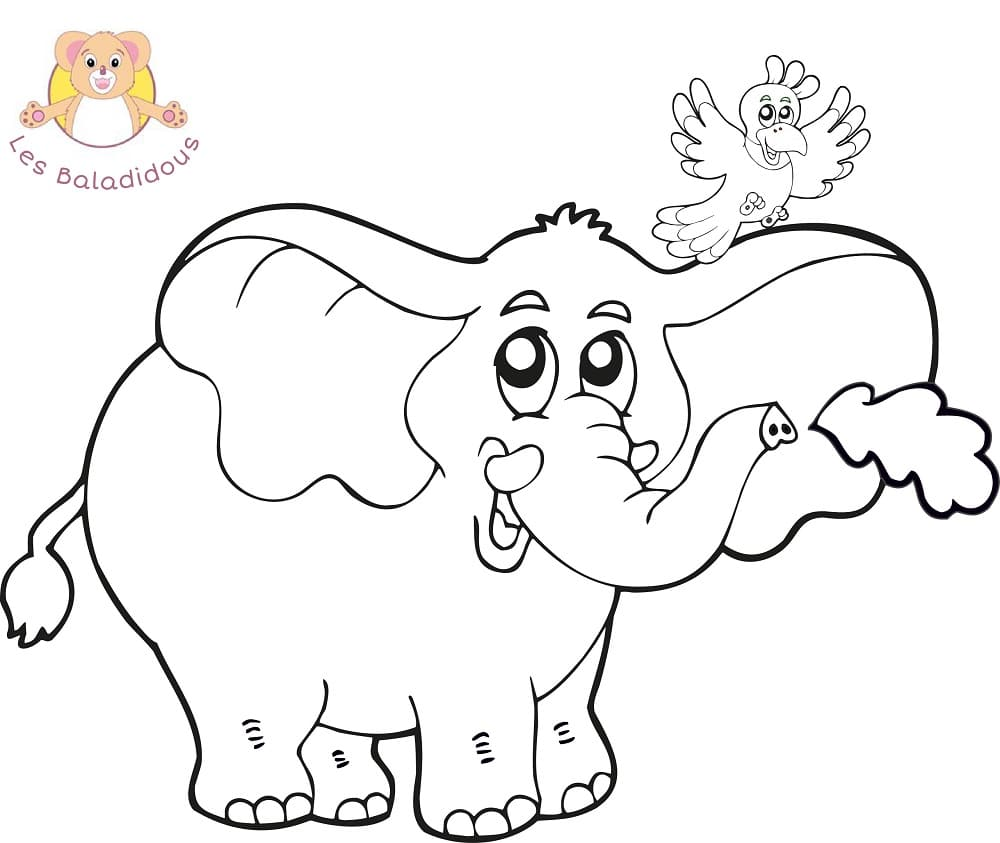 coloriage_elephant_perroquet