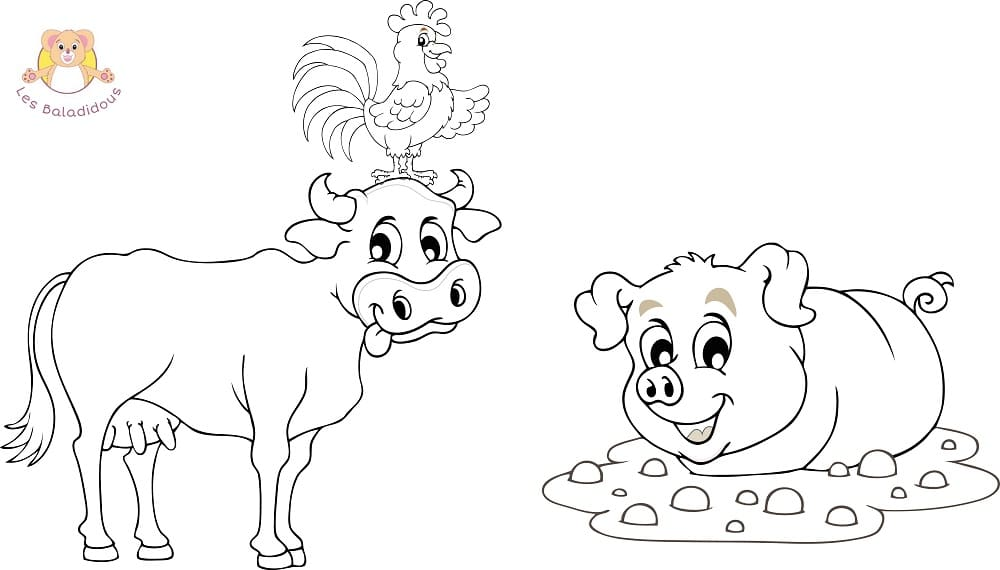 Coloriages et comptines - Dessin d un cochon ...