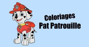 Coloriage Pat Patrouille