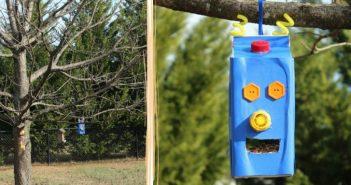 mangeoire robot oiseaux