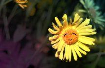 grand jeu sur les fleurs