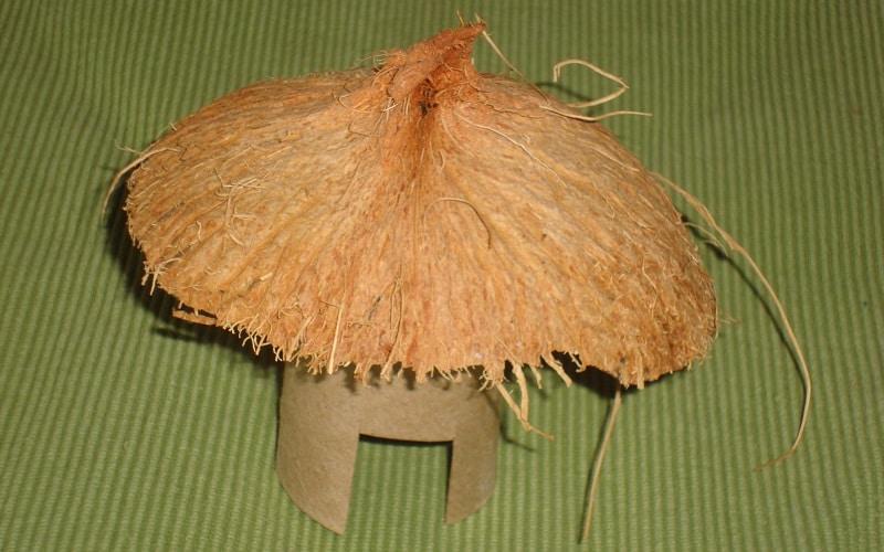 bricolage avec noix de coco