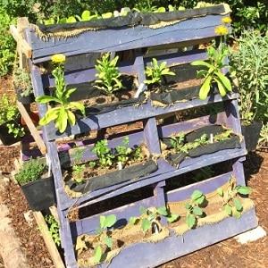 conseils pour faire du jardinage urbain avec des enfants. Black Bedroom Furniture Sets. Home Design Ideas