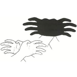 ombre chinoise facile main