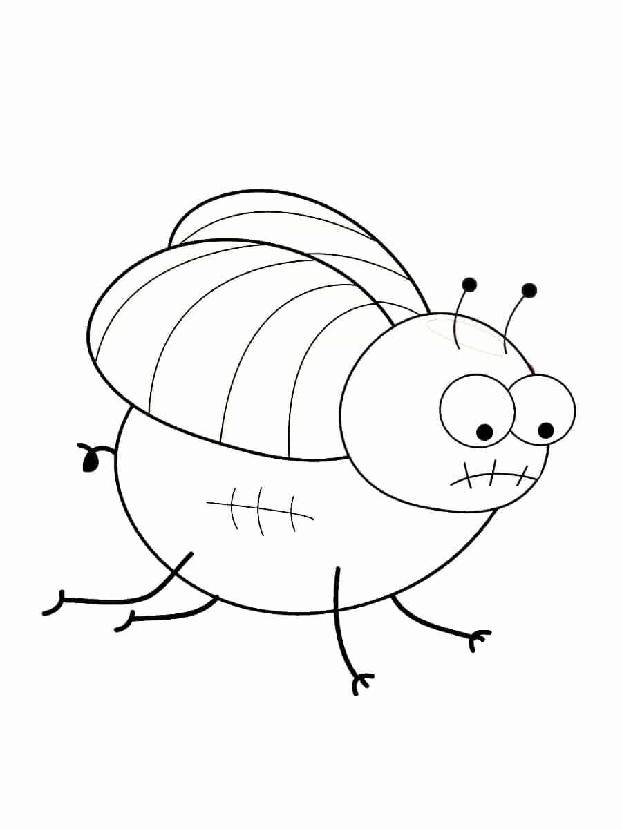 Coloriage Insecte Dessins A Imprimer Gratuitement