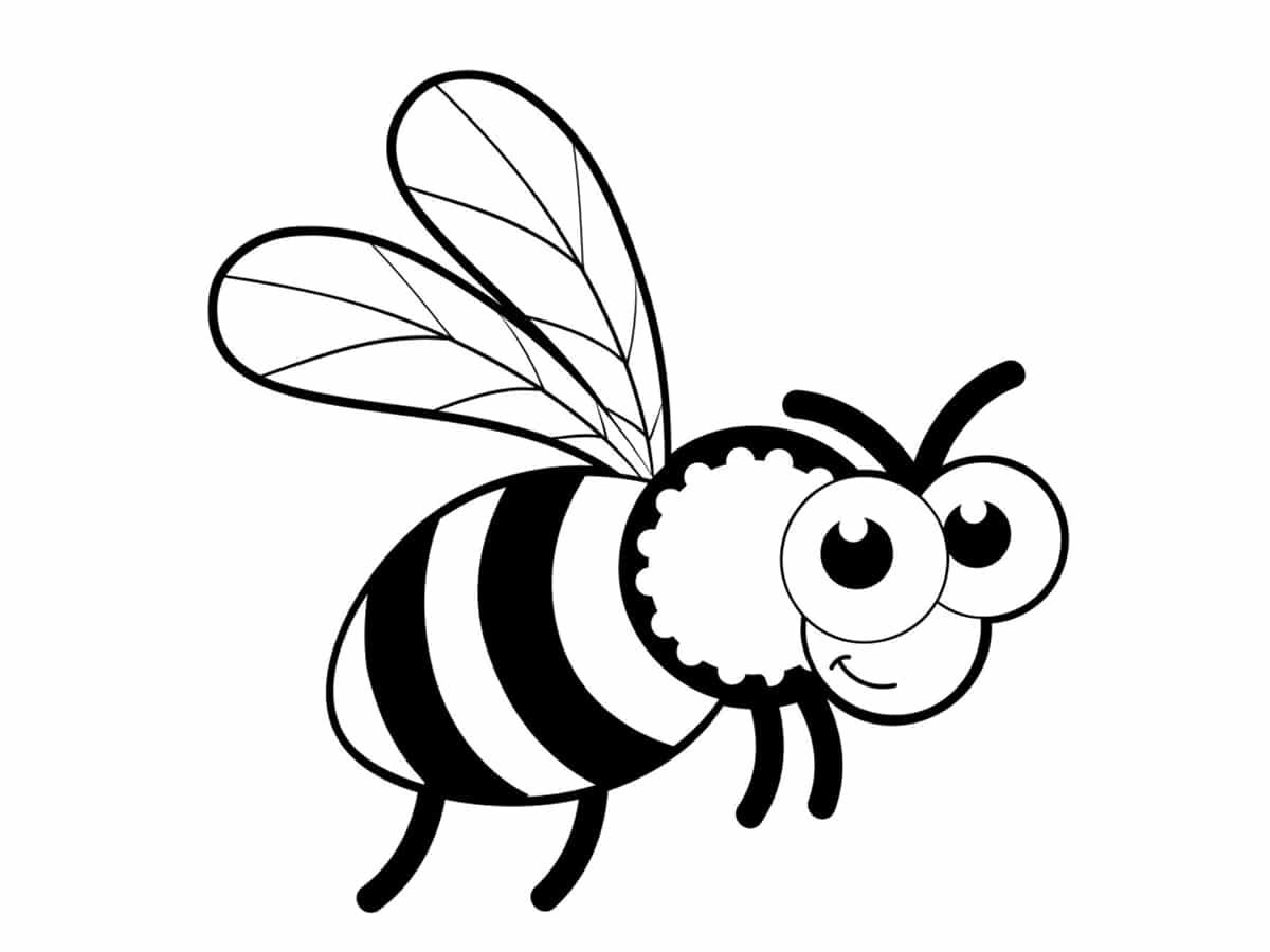 dessin d'une abeille