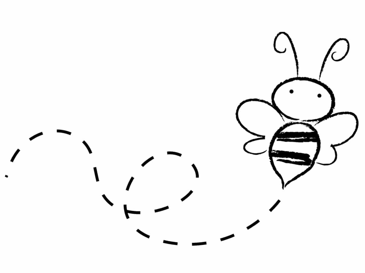 petite abeille dessin