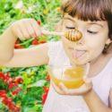 Jeux sur les abeilles : des idées pour s'amuser sur le thème des abeilles