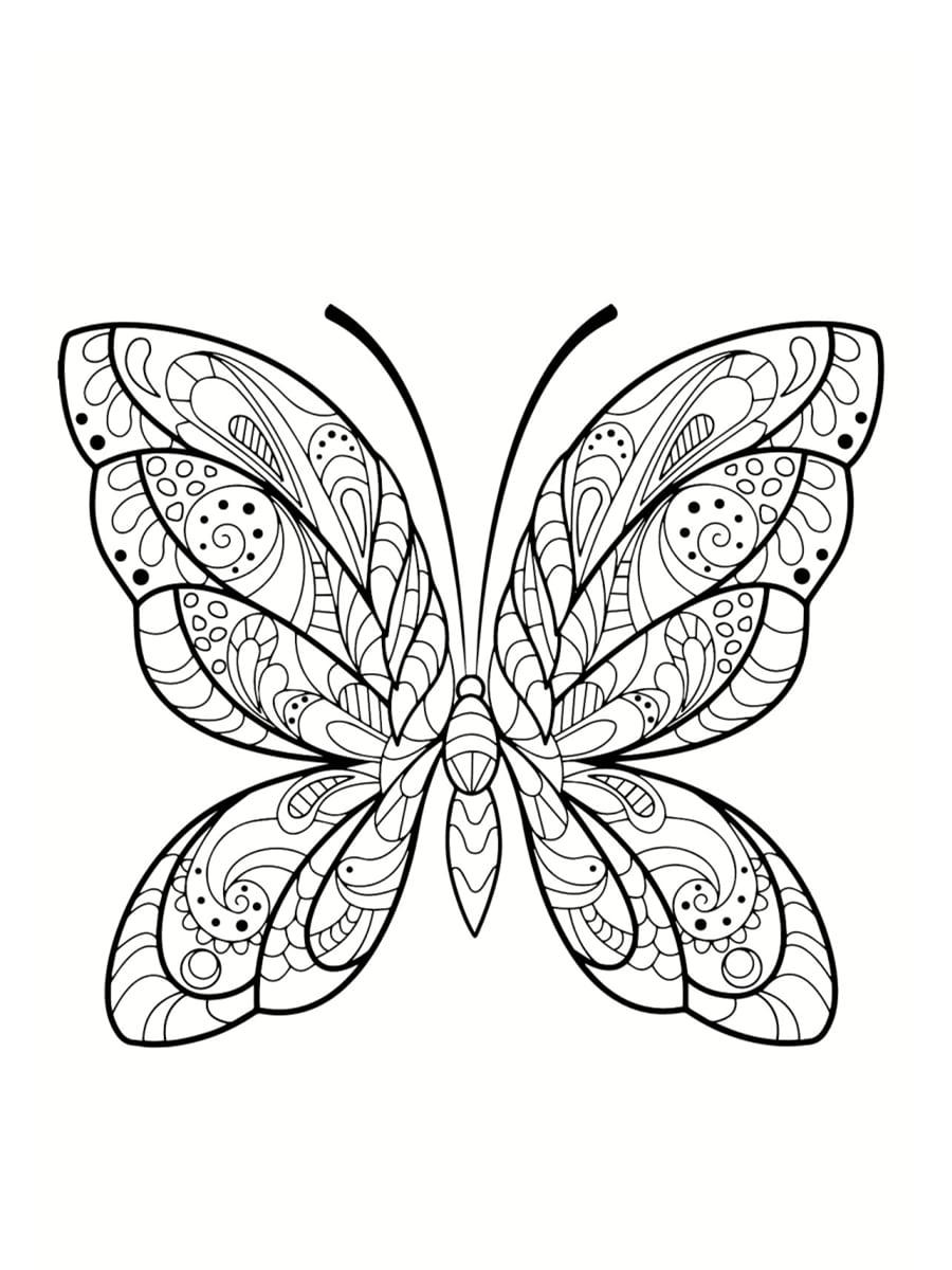 beau coloriage papillon
