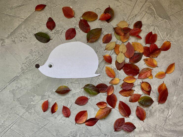 activité automne feuilles arbre
