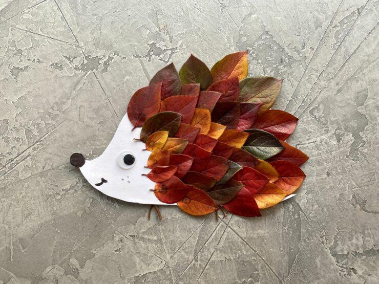 hérisson avec feuilles d'arbre