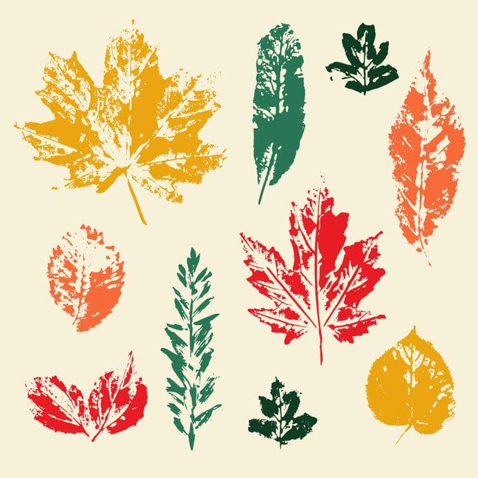 impression feuilles arbre