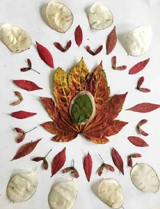 mandala de feuilles séchées